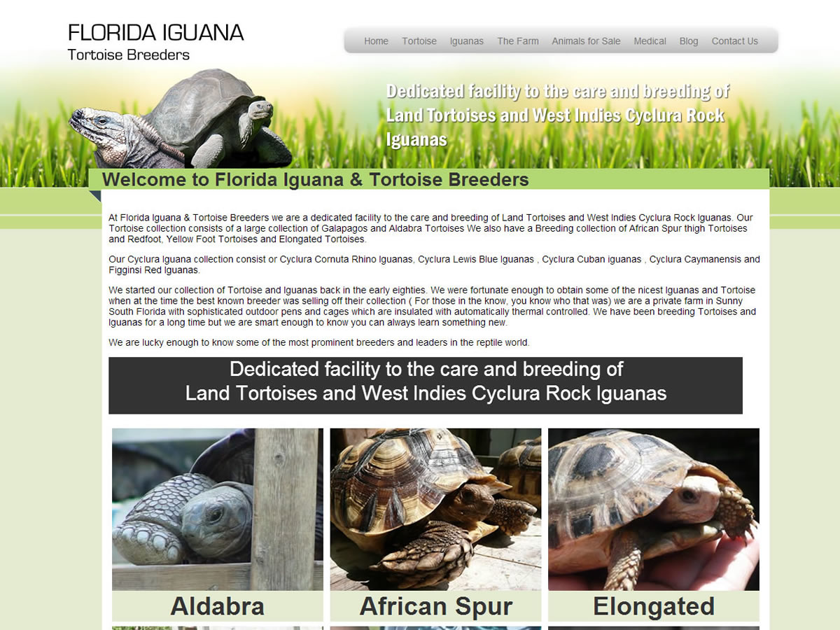 Florida Iguana and Tortoise Breeders